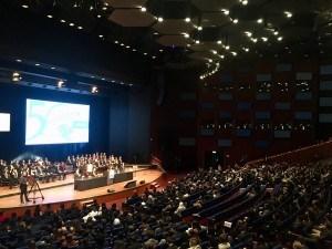 l'assemblea plenaria